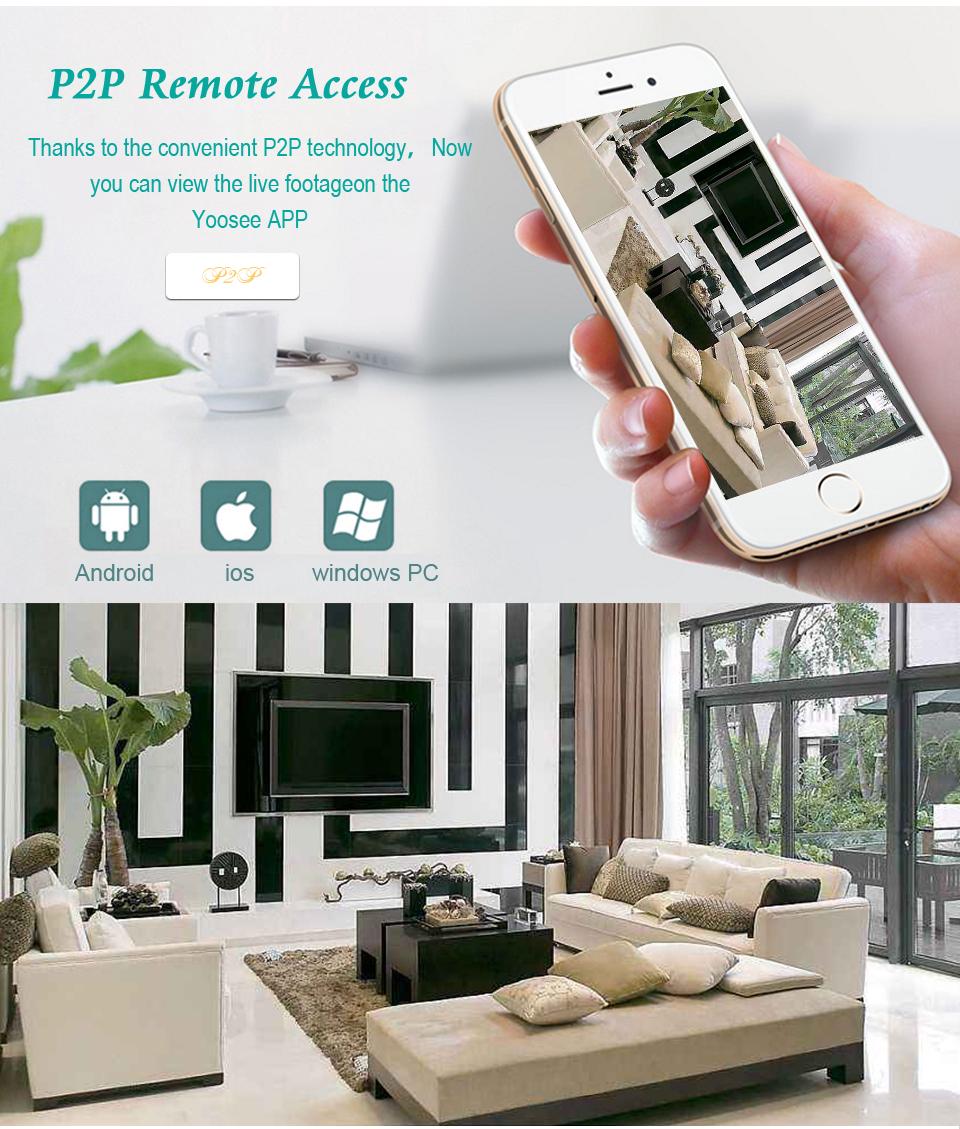 p2p remote view